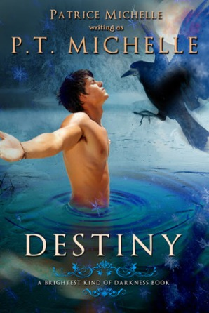Destiny by PT Michelle