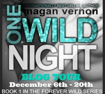 One Wild Night Tour Banner