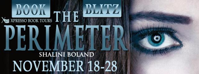 Perimeter Blitz Banner