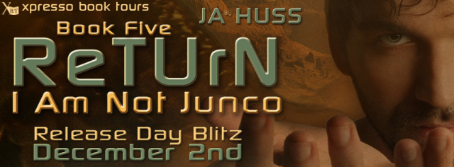 Return Blitz Banner