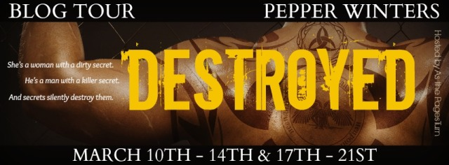Destroyed Tour Banner