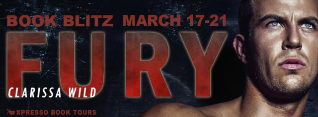 Fury Blitz Banner