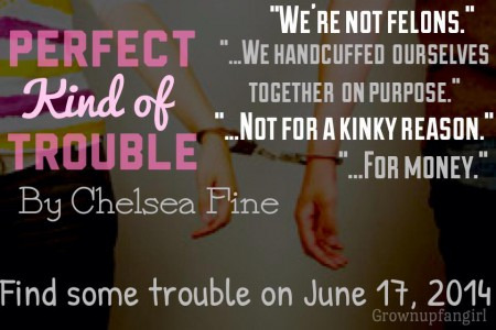Perfect Kind of Trouble Teaser