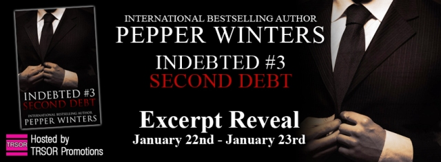 Second Debt excerpt reveal