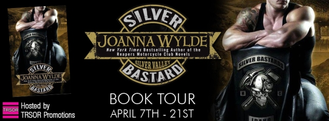 Silver Bastard tour banner