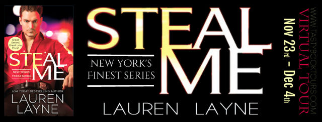 Steal Me tour banner