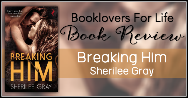 breaking him review banner